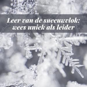 Leer van de sneeuwvlok